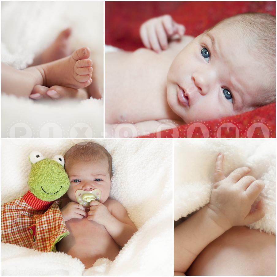Faszination der ersten Lebenstage - Fotografie Neugeborene