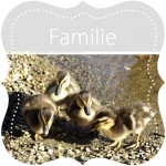 FOTOGALERIE  Familie