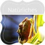 Fotogalerie Natuerliches
